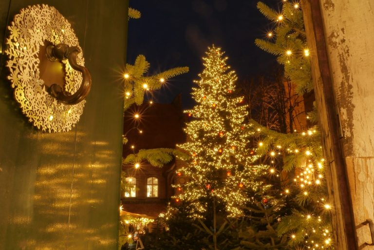 Alle Jahre wieder – Mölln sucht einen Weihnachtsbaum