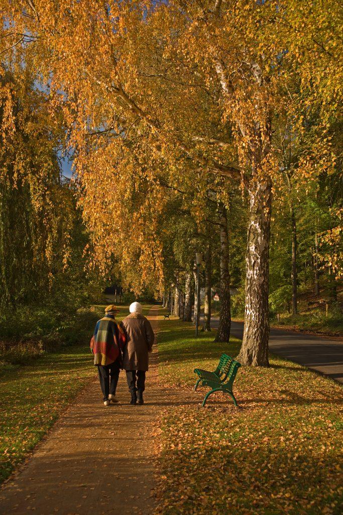Herbstspaziergang in Mölln; Foto: © Ebelt