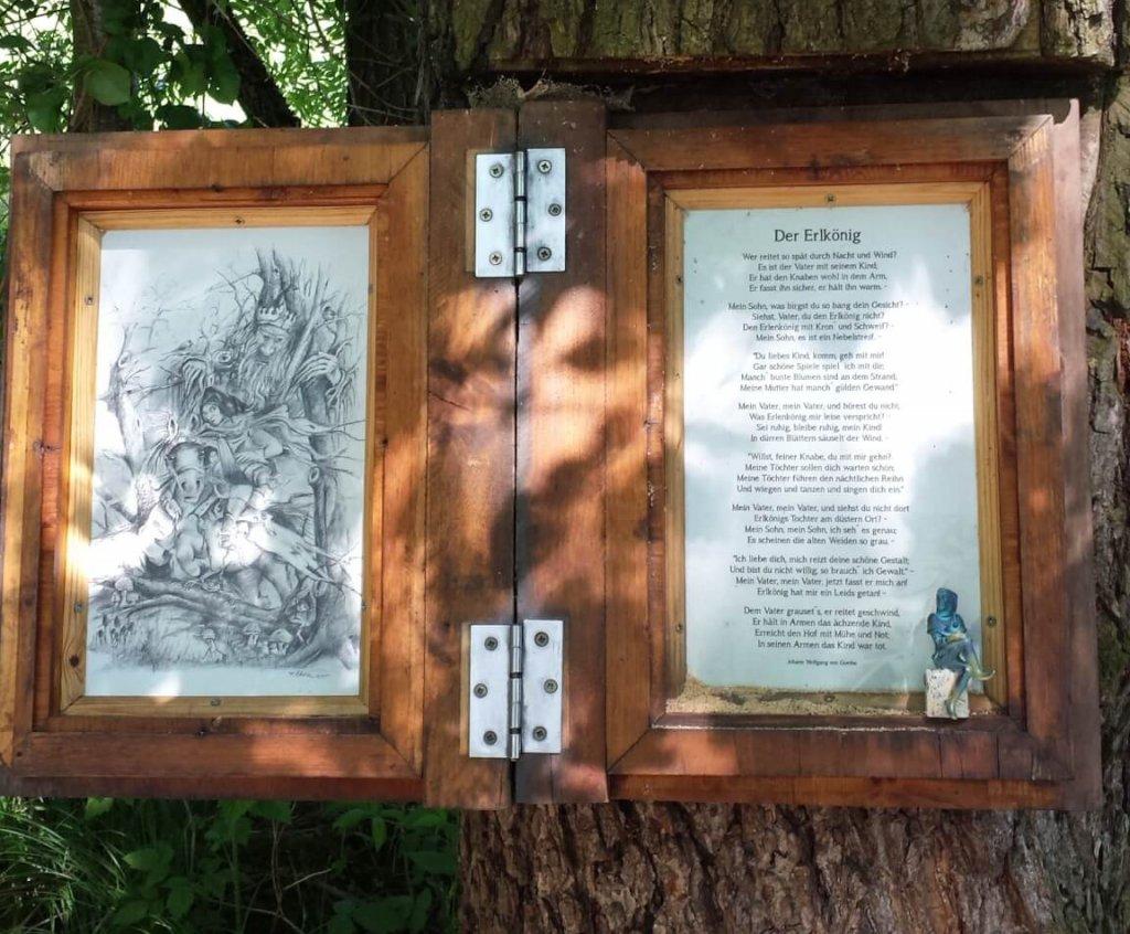 Ein Buch in einem Baum - Foto von Nadine