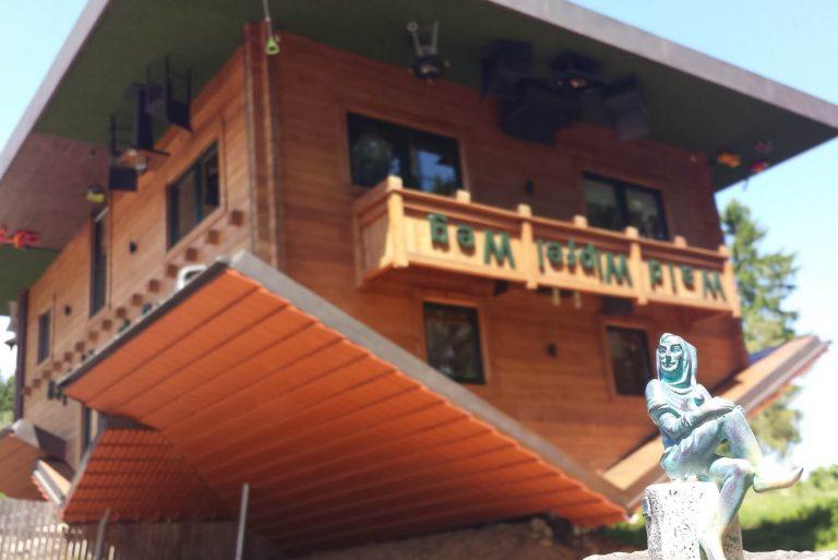 Tills Abenteuer im Bayerischen Wald