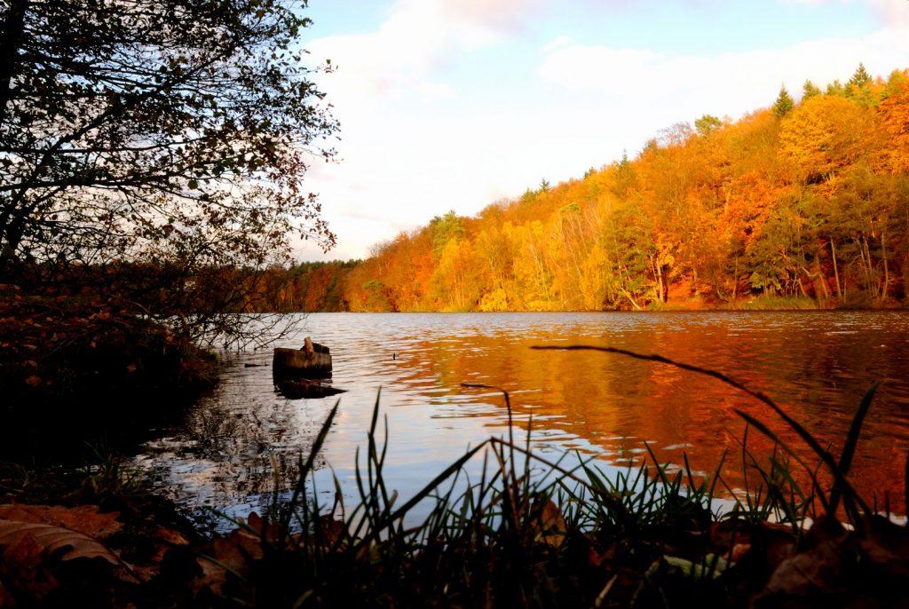 Herbstliche Wald- und Seenlandschaft; Foto: © Jochen Buchholz