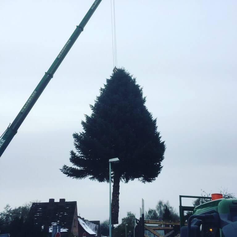 Alle Jahre wieder – schwebt ein Weihnachtsbaum
