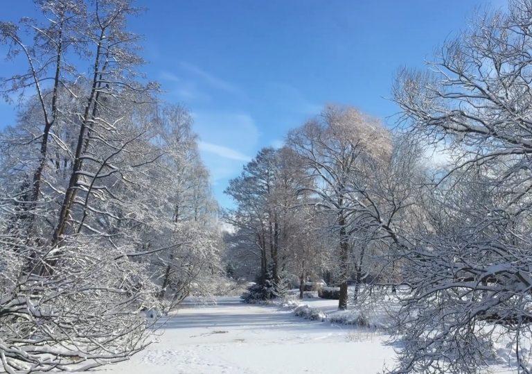 Top 7 Aktivitäten im Winter
