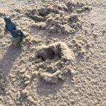 Till am Strand mit Britt Stein